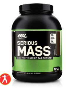 optimum-nutrition-serious-mass-6lbs